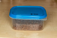 Breeding box for springtails.