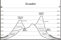 Altitude (vegetation) zones in Ecuador